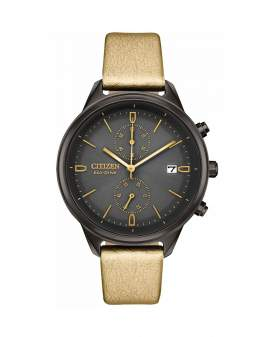 Citizen Eco Drive Chandler Bronce de Mujer FB2007-04H